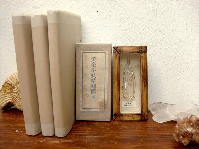 黄金系妖精翅ミニ標本(蝉型)キナリ。の画像1枚目