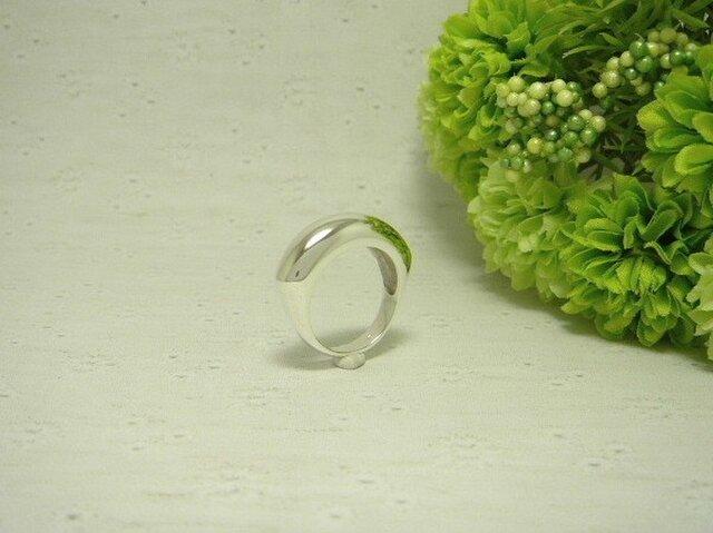 taniku ふっくら Ring 9の画像1枚目