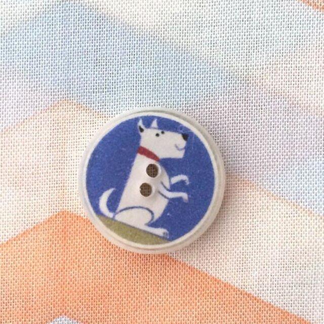 ココナッツ&レジンボタン 犬 ブルーS 905の画像1枚目
