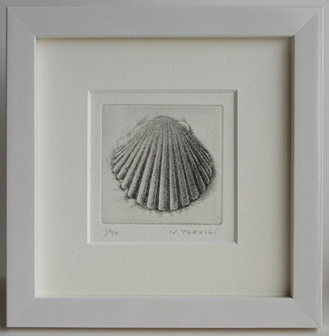 貝殻・F / 銅版画 (額あり)の画像1枚目