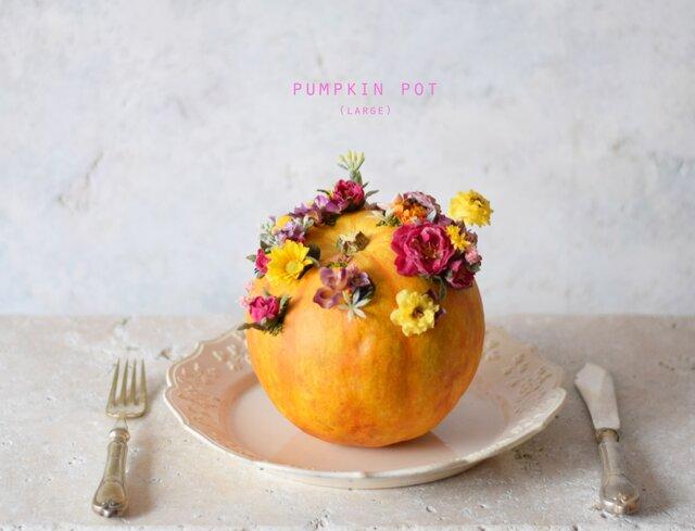pumpkin pot(large) フラワーの画像1枚目