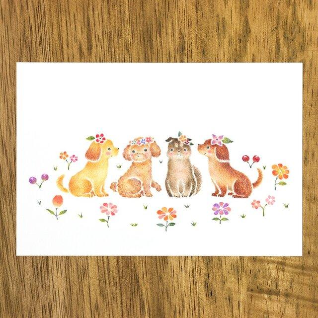 """4枚セット。絵本のような。ポストカード """"花を飾った子犬たち"""" PC-331の画像1枚目"""