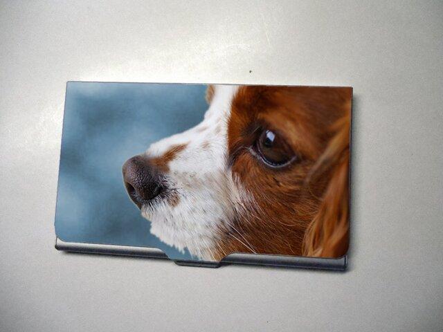 アートカードケース(名刺入れ) 犬【送料無料】の画像1枚目
