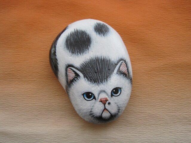 石猫 「ブサカワって 呼ばないで!」の画像1枚目
