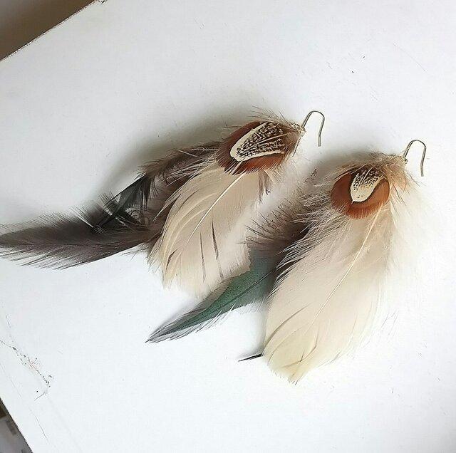 Feather DarkGreen ピアス・イヤリングの画像1枚目