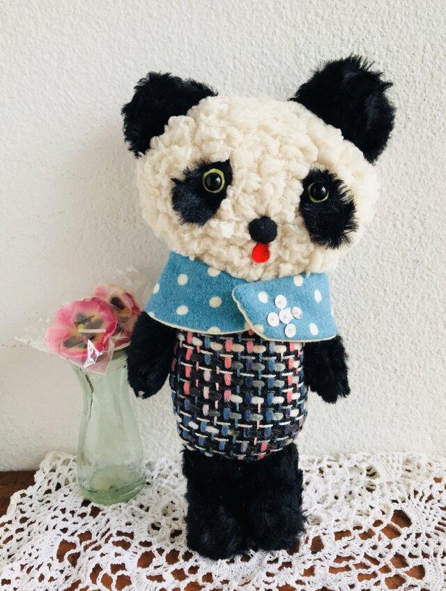 冬のパンダちゃんの画像1枚目