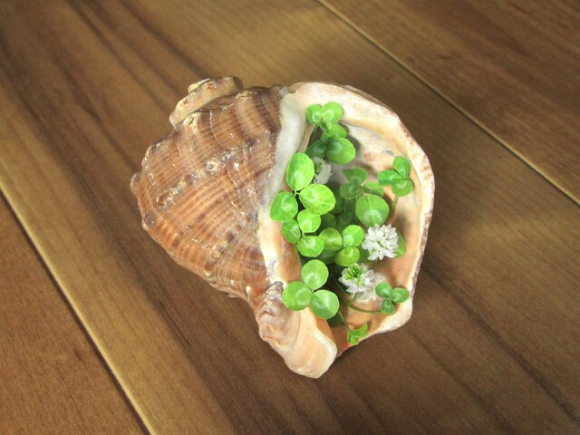 貝がら ミニチュア Green シロツメクサ Mの画像1枚目