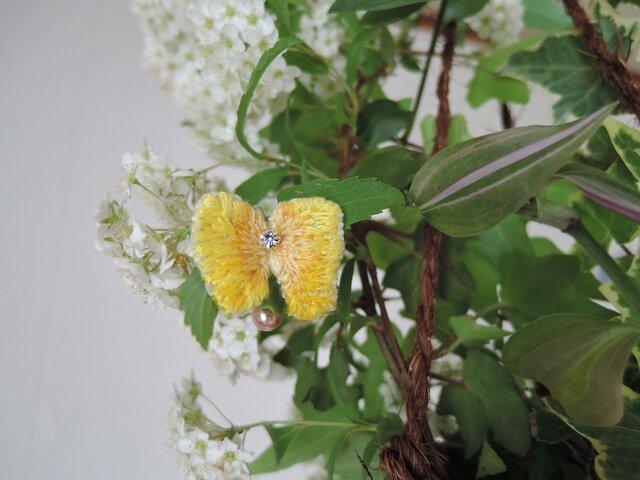 AnimalMedicine<butterfly>小さな太陽の画像1枚目