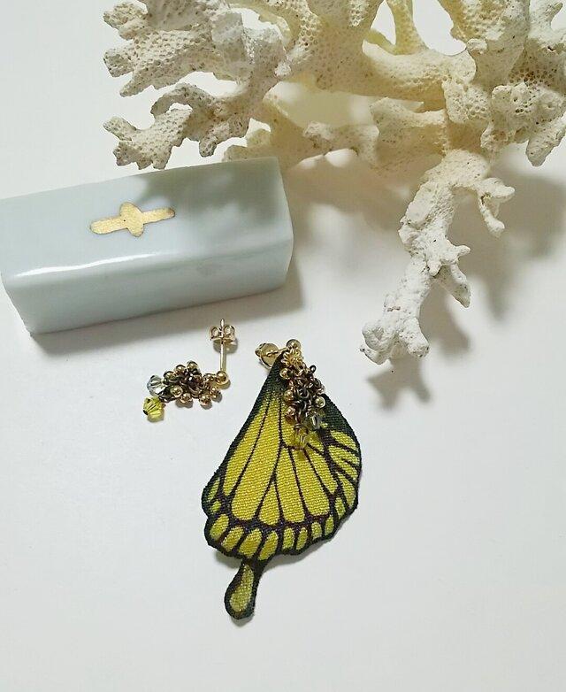 蝶の羽ピアス (アゲハ)の画像1枚目