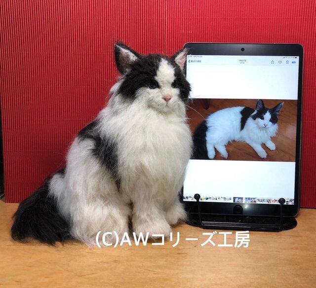 羊毛フェルト21cm:オーダーメイドの猫人形(植毛、ストレート)の画像1枚目
