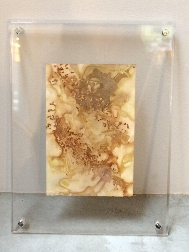 ボタニカルプリントのフレーム (15x18cm)の画像1枚目