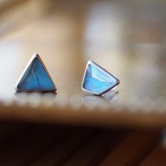 モルフォ蝶のはね三角しかくピアス 真鍮 / RP(ペア)の画像1枚目