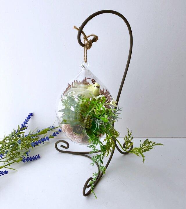 多肉植物 ガラステラリウム+スタンドの画像1枚目