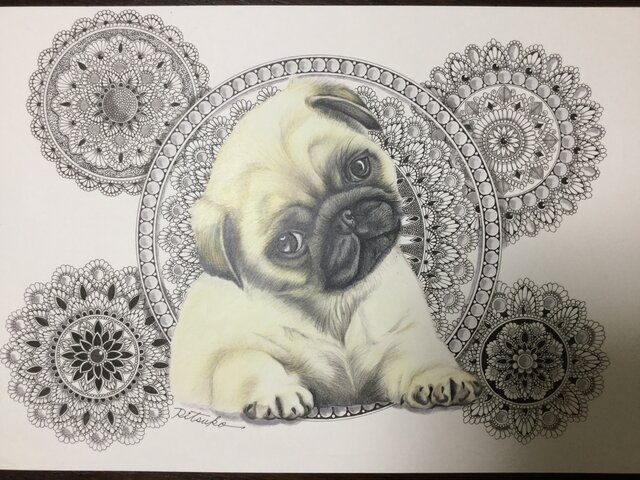 原画 肉筆 一点もの ボールペンアート  パグ パグの絵  犬 犬の絵 いぬ イヌ 百貨店作家 人気 ボールペン画 絵画の画像1枚目