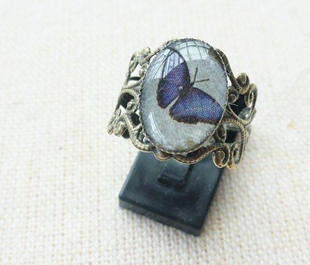 プレゼント専用群青色の蝶のリングの画像1枚目