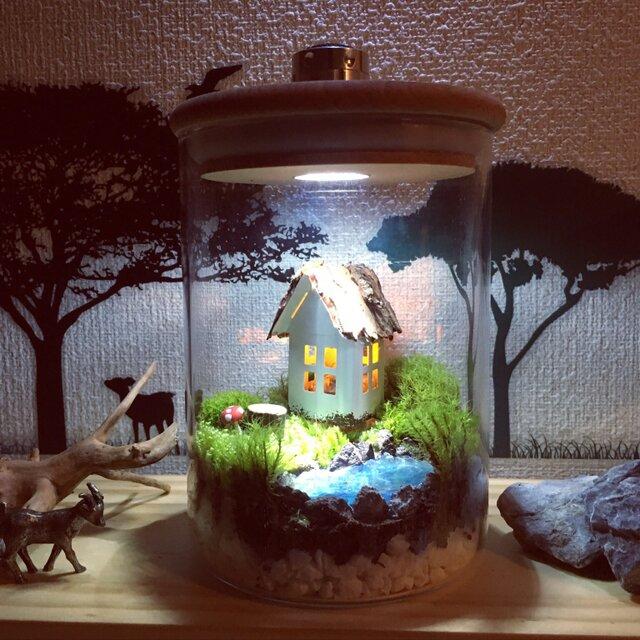 ☆受注生産☆mossbright 泉の森の月灯り フォレストリトルハウス  テラリウムインテリアライトの画像1枚目
