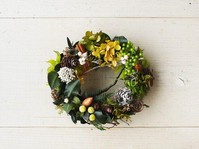 渋可愛いプリザのアジサイと木の実のミニリースの画像1枚目