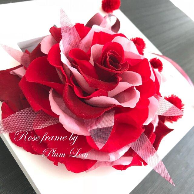 紅薔薇のドレス 大輪ローズ フレームの画像1枚目
