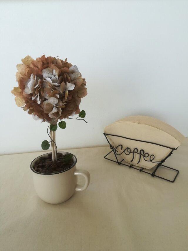 【送料無料】cafe トピアリーの画像1枚目