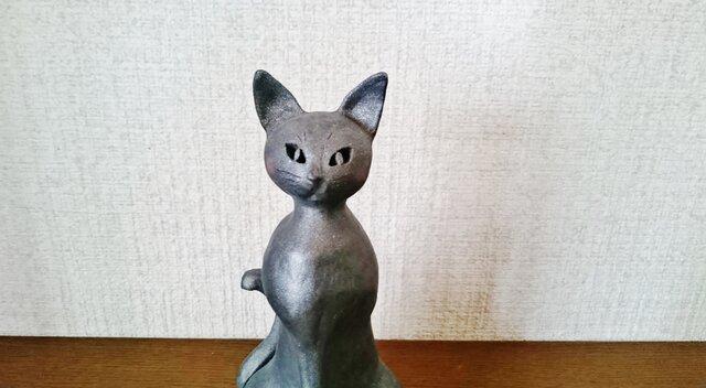 猫 まっすぐなまなざし の画像1枚目