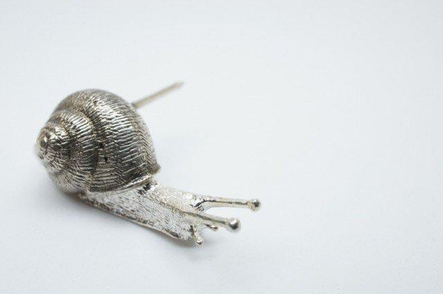 Snail pinsの画像1枚目