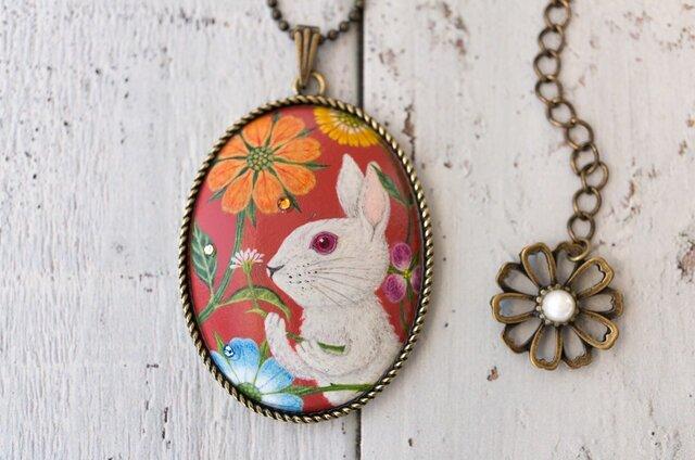 シロウサギ、花のお祭り日の画像1枚目