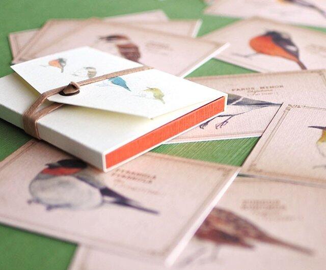 ちょっと大きめ*野鳥たちのメッセージカード(専用ケース付き)の画像1枚目