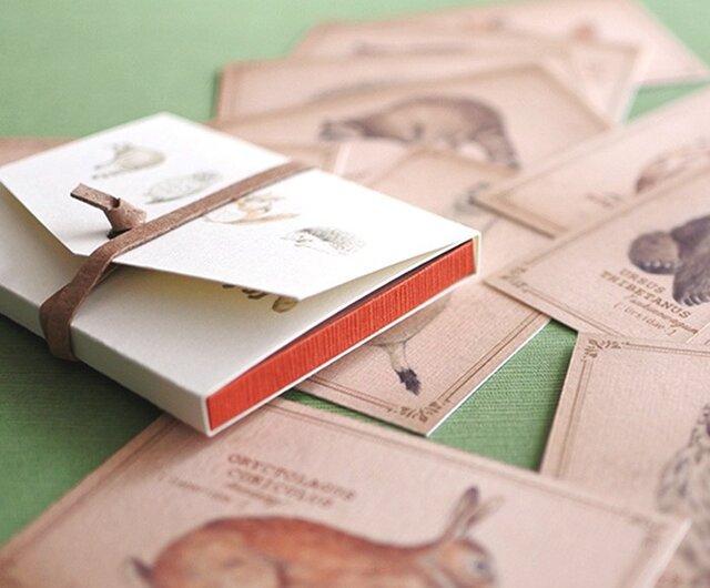 ちょっと大きめ*森の動物たちのメッセージカード(専用ケース付き)の画像1枚目