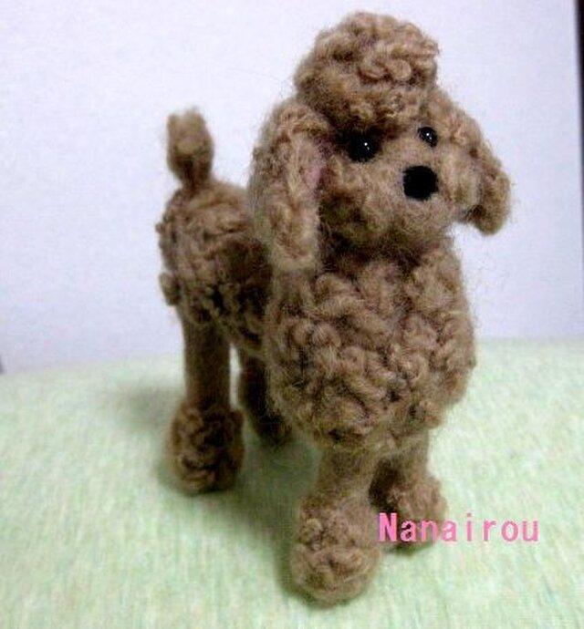 羊毛フェルトの「トイプードル」の画像1枚目