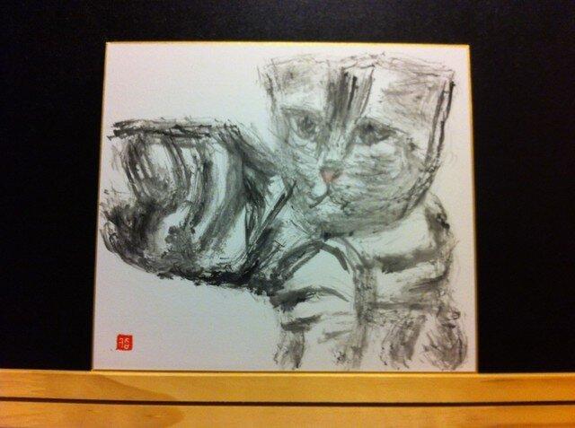 お茶目な猫の画像1枚目