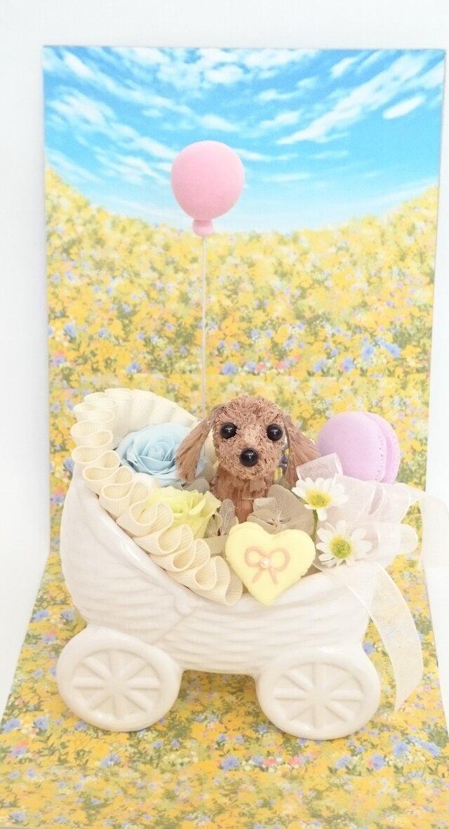 お花で作ったミニチュア・ダックスフンド「こんにちは♡赤ちゃん」の画像1枚目