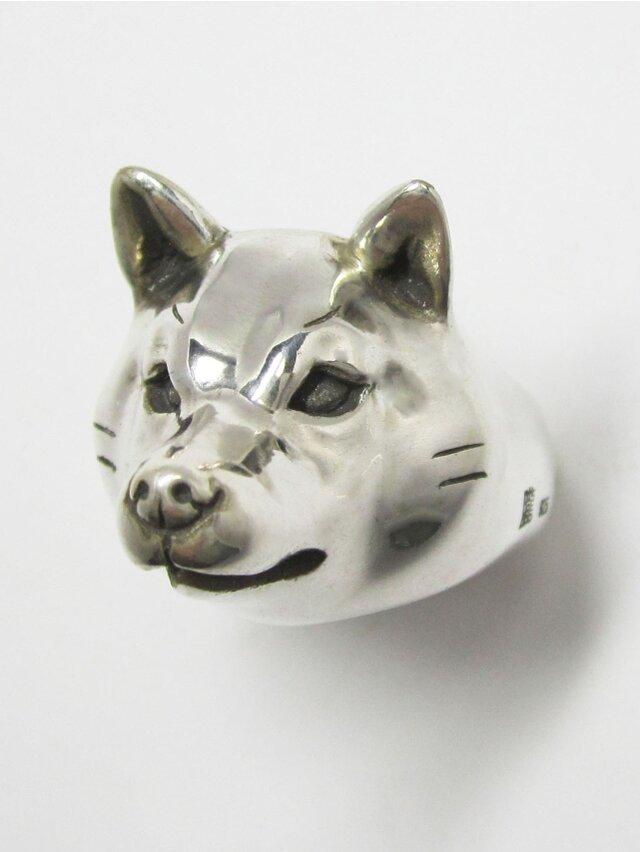 柴犬/成犬RING(大)の画像1枚目
