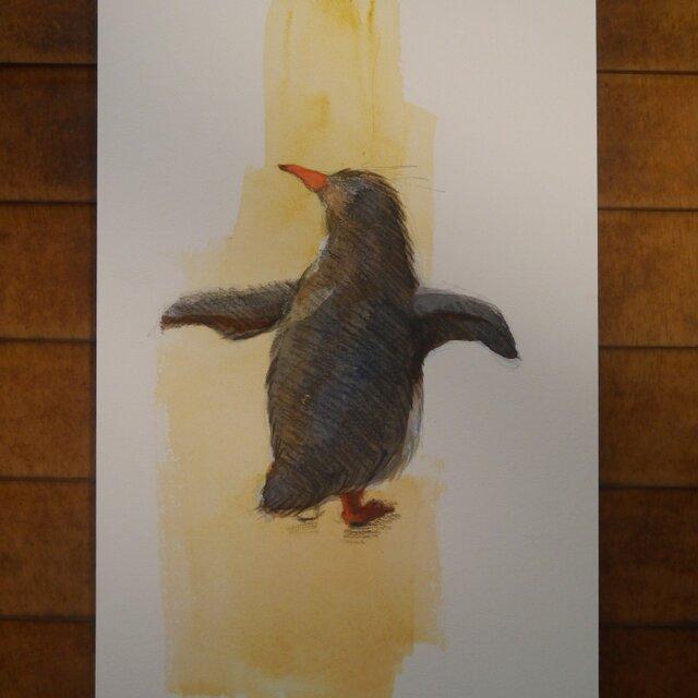 たたずむペンギン-1の画像1枚目