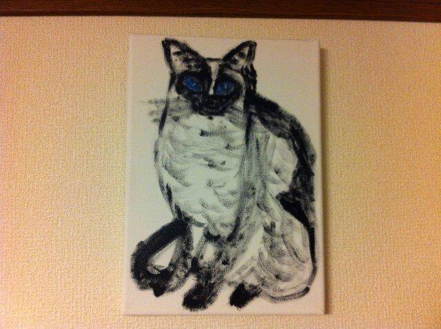 凛と佇むシャム猫の画像1枚目