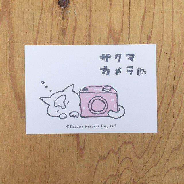 サクマカメラポストカード カメラの奥で寝るサクマの画像1枚目