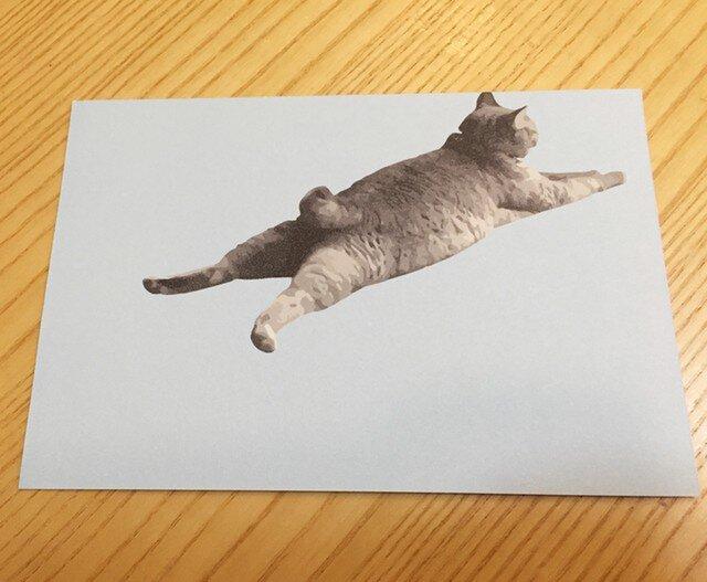 ネコポストカード ねころびネコの画像1枚目