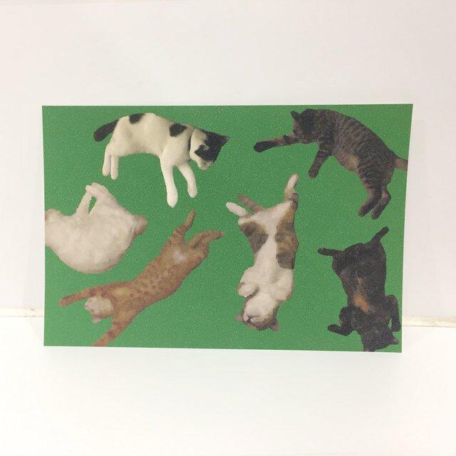 ころがるネコたちポストカードの画像1枚目