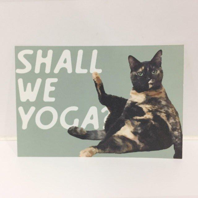 ころがるネコたちポストカードヨガサビ猫ポストカードの画像1枚目