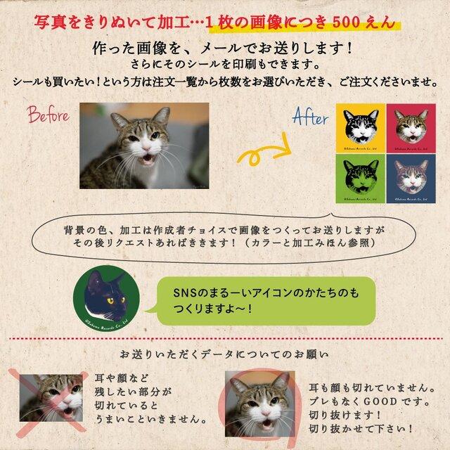 ■画像お渡し■あなたのネコ(イヌでもOK!)切り抜き加工します★SNSのアイコンなどに(*^^*)の画像1枚目