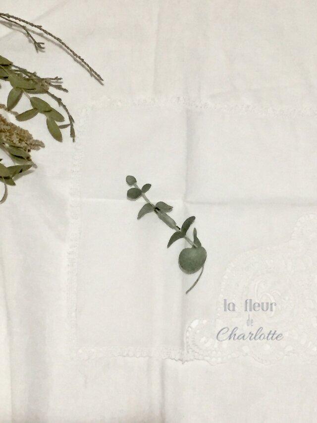 染花✳︎ユーカリのブローチ【シルバーグリーン】の画像1枚目