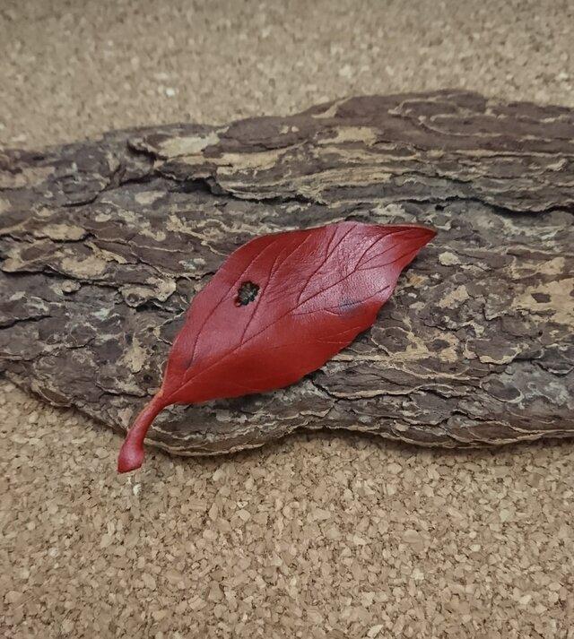 葉っぱモチーフのブローチ④の画像1枚目