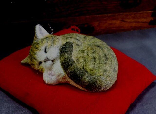 手乗り猫 アンモニャイト キジトラ猫さん 座布団付の画像1枚目