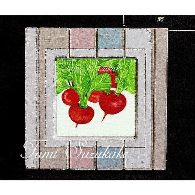 額付き水彩・原画「赤カブ」の画像1枚目