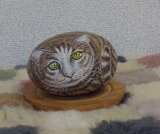 癒やしのネコの画像1枚目