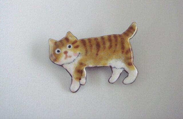 七宝 お散歩中の縞猫の画像1枚目
