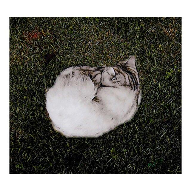 冬眠する    ポスターの画像1枚目
