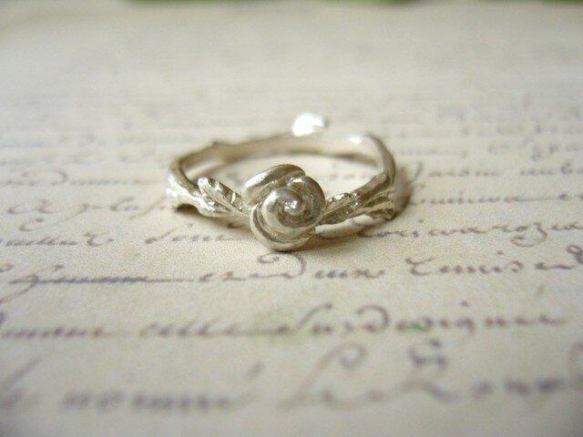 バラの指輪の画像1枚目