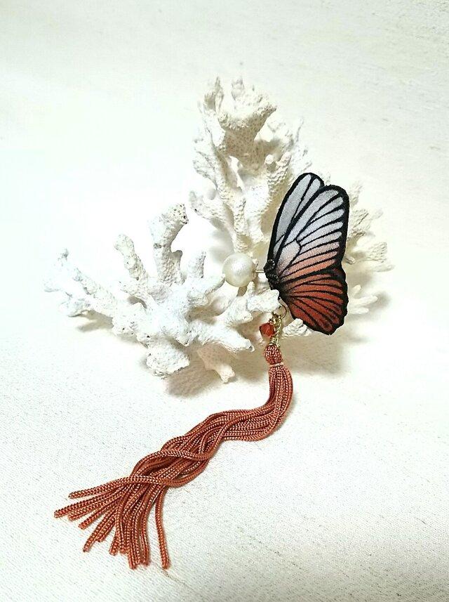 蝶のピアス 小 (マダラ系)の画像1枚目