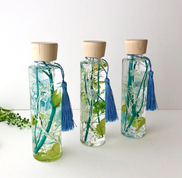 グリーンのハーバリウム【herbarium】の画像1枚目