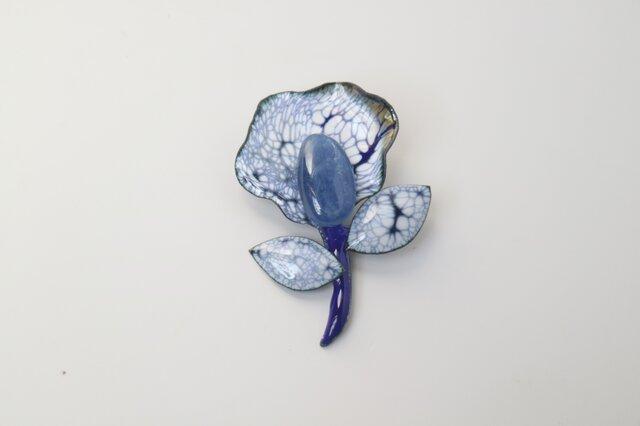 カイヤナイトの花の画像1枚目